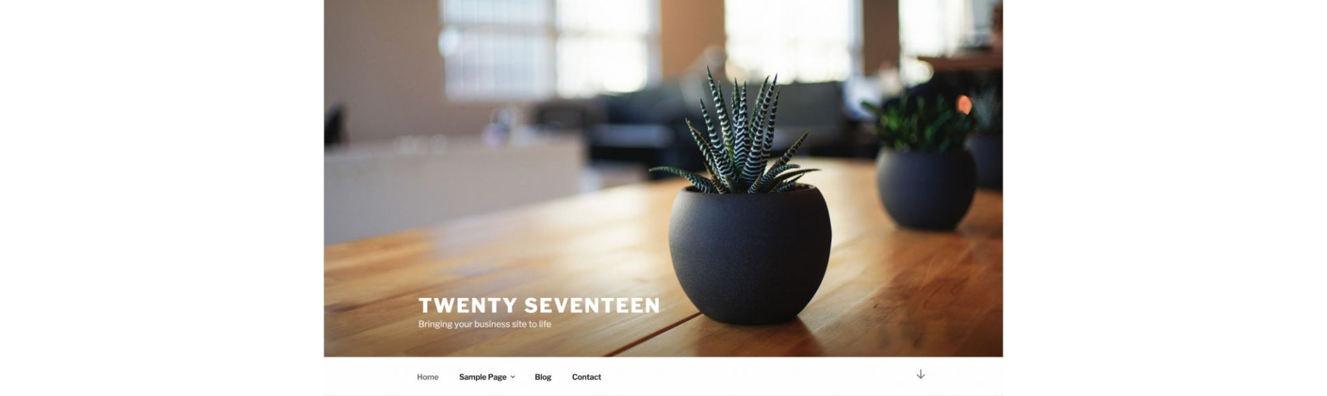 WordPress Test Server Environment, other optimization configuration jobs - twenty-seventeen theme screenshot